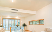 Concealed and Ducted Systems